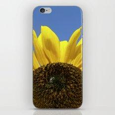 summer sunflower IV iPhone & iPod Skin