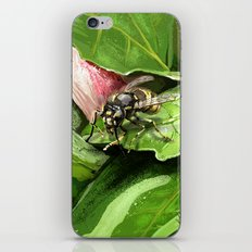 Wasp on flower16 iPhone & iPod Skin