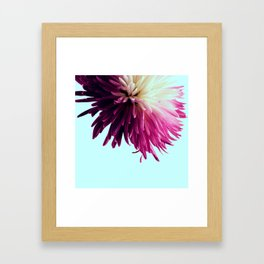 One Flower Framed Art Print