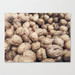 walnuts with shell Canvas Print
