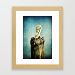 Brown Pelican Art Framed Art Print