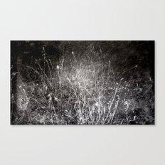 Nature  1  Canvas Print