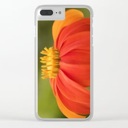 Mexican Sunflower Clear iPhone Case