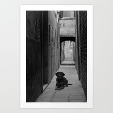 Alley Hound Art Print
