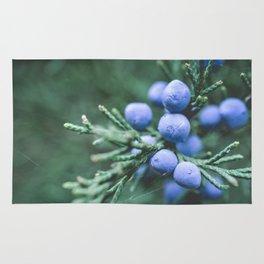 Winter Berries Rug