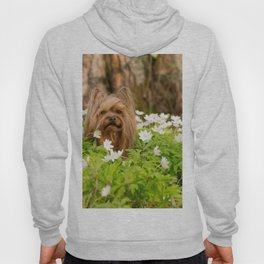 Summer Vibes - Small Yorkie Dog In Spring Forest #decor #society6 #buyart Hoody