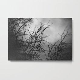 The Dead Plum Tree Metal Print