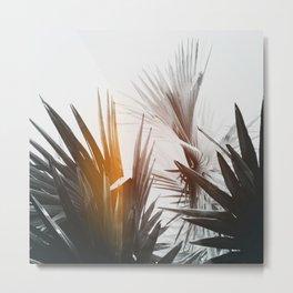 Flare #1 Metal Print
