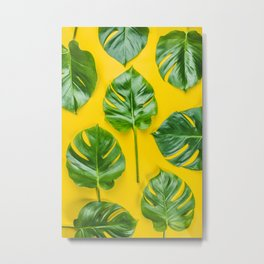 Monstera leaves on yellow background Metal Print