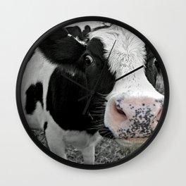 Something kinda moo Wall Clock