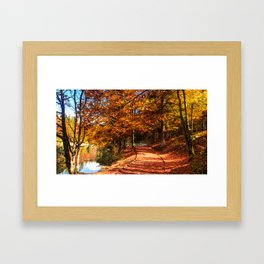 Autumn foliage at the alpine lake Framed Art Print