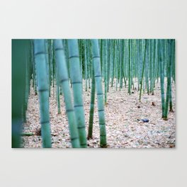 The Bamboo Grove, Arashiyama, Kyoto Canvas Print