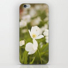 Tiny Flower iPhone & iPod Skin