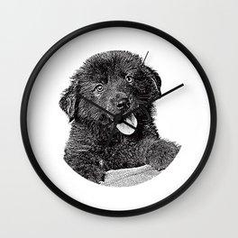 Cute fluffy puppy Wall Clock