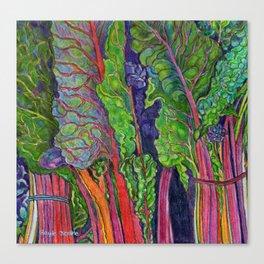 Rainbow Chard Canvas Print