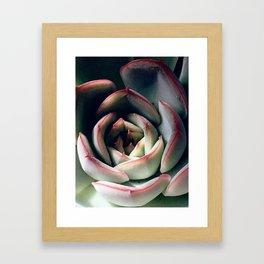 compact Framed Art Print