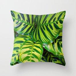Leaf 1 Throw Pillow
