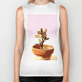 Little succulent money plant in pot Biker Tank