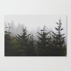 Trees + Fog Canvas Print