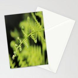 Unfurling Fern Stationery Cards