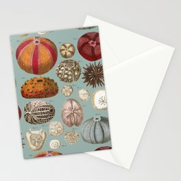 Vintage Molluscs Stationery Cards