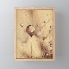 dandelion gold Framed Mini Art Print