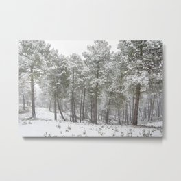 Into the snowstorm. Felling free the mountains.... Metal Print