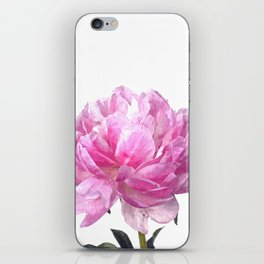 Pink peony illustration iPhone Skin