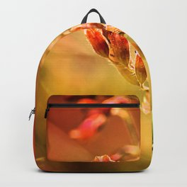 TANGERINE SPANGLES no1 Backpack
