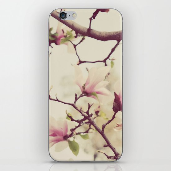 Blossoms and Branches iPhone & iPod Skin