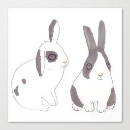 Rabbits and bunnies Canvas Print