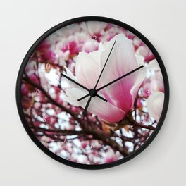 pink petals of magnolia Wall Clock