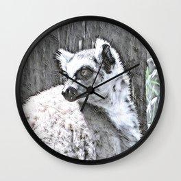 Impressive Animal - Katta Wall Clock