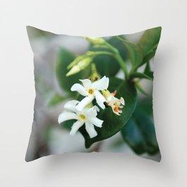 Jasmine Star Flower Throw Pillow