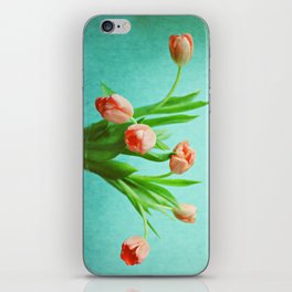 Delightful Display iPhone Skin