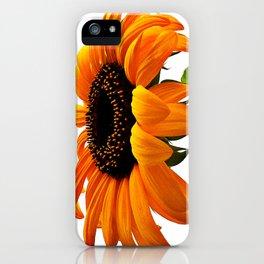 FLOWER 032 iPhone Case