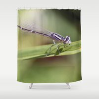 dragon Shower Curtains featuring Dragon! by IowaShots