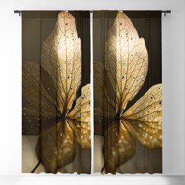 Autumn Scene - Dry Petals with Golden Sunset Light #decor #society6 #buyart Blackout Curtain