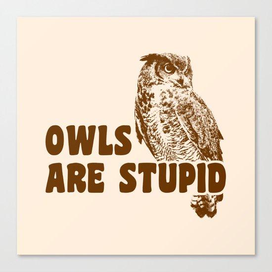 Owls Are Stupid Canvas Print