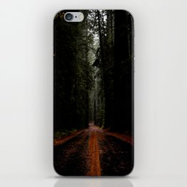 Avenue of the Giants iPhone Skin