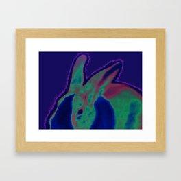 Solar Bunny Framed Art Print