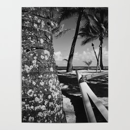Kuau Beach Palm Trees and Hawaiian Outrigger Canoe Paia Maui Hawaii Poster