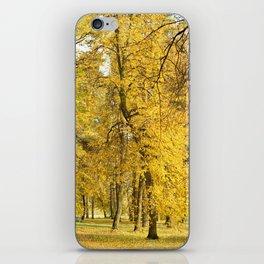 Art of Fall iPhone Skin