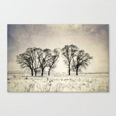 Dark Winter Days Canvas Print