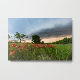 Serendipity - Indian Paintbrush Wildflowers and Advancing Storm in Texas Metal Print
