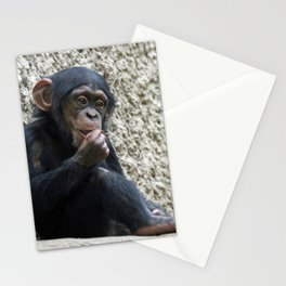 Chimpanzee_20141201_by_JAMFoto Stationery Cards
