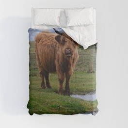 Highland Cow By The Water Puddle Comforters