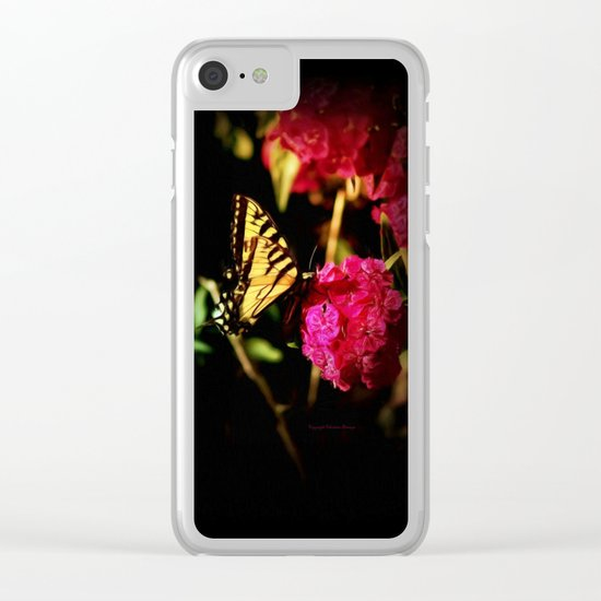 Sunlight & Spices Clear iPhone Case