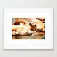 bears Framed Art Prints featuring Bears by Sylvia C
