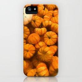 Pumpkins Tiny Gourds Pile iPhone Case